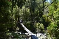 Bridge crossing, La Junta hike, Chile