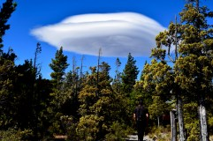 Alien cloudship