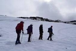 Castaño Overo glacier