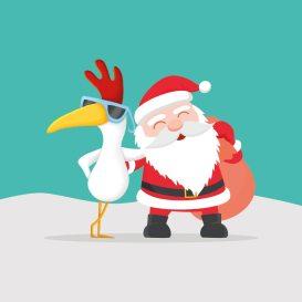 Offre Noël Facebook Poule des Champs