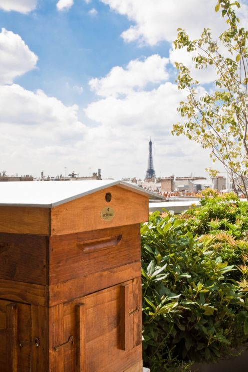 Hives at the Mandarin Oriental