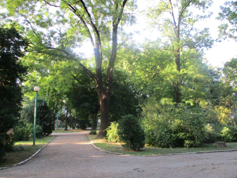 Община Видин ще финансира проекти за по-добра среда на живот
