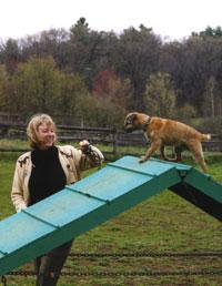 Hayvan Davranışları ve Eğitiminin Yıldızı Kadınlar http://sevgilikopegim.com/2015/02/10/hayvan-davranislari-ve-egitiminin-yildizi-kadinlar/