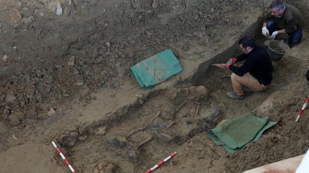 Los trabajos ya han sacado a la luz los restos de un esqueleto casi al completo y dos cráneos más.
