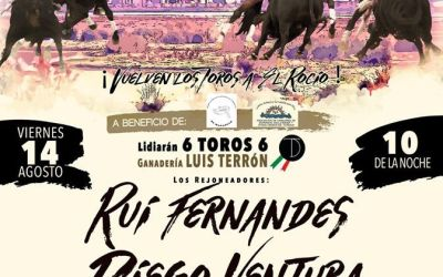 Aplazado el festejo de rejones de la aldea de El Rocío