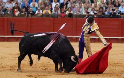 Castella: A los 14 años de su faena al toro 'Encendido' de Zalduendo