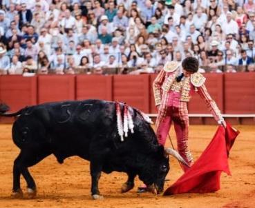 Castella_Sevilla250916