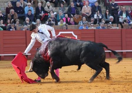 Delgado_Sevilla 2016AP
