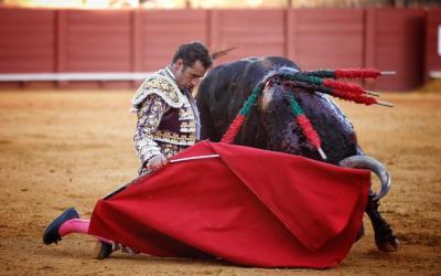 Corrida de toros – Fuente Ymbro – Antonio Ferrera, El Fandi y López Simón