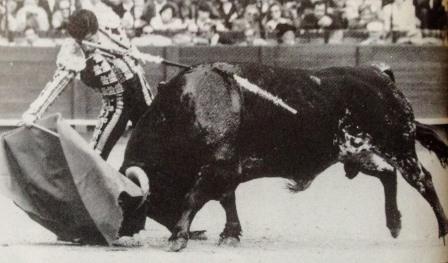 Juan Mora Año 1003