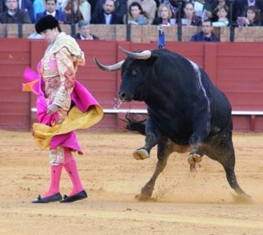 Lopez Simón_Sevilla2016AP