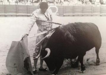 Manzanares1993