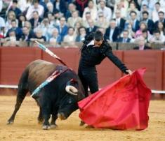 Manzanares_Sevilla 24-4-15