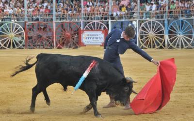 La Algaba: 3ª de Feria – Discreto fin de la feria