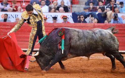 México: Toreros dignos, toros indignos