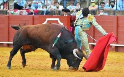 Sevilla: 3ª de San Miguel – Impacto de Perera con una gran novillada de El Parralejo