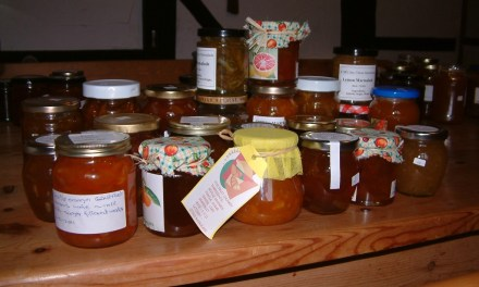 Herefordshire Marmalade Festival
