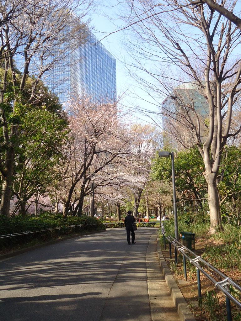 shinjuku-chuo-park-ruas