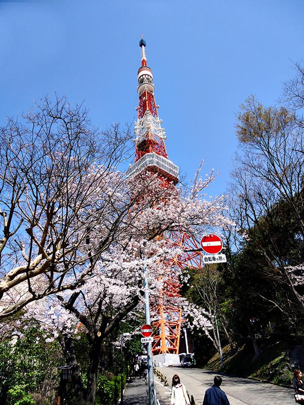 Chegando na tokyo tower