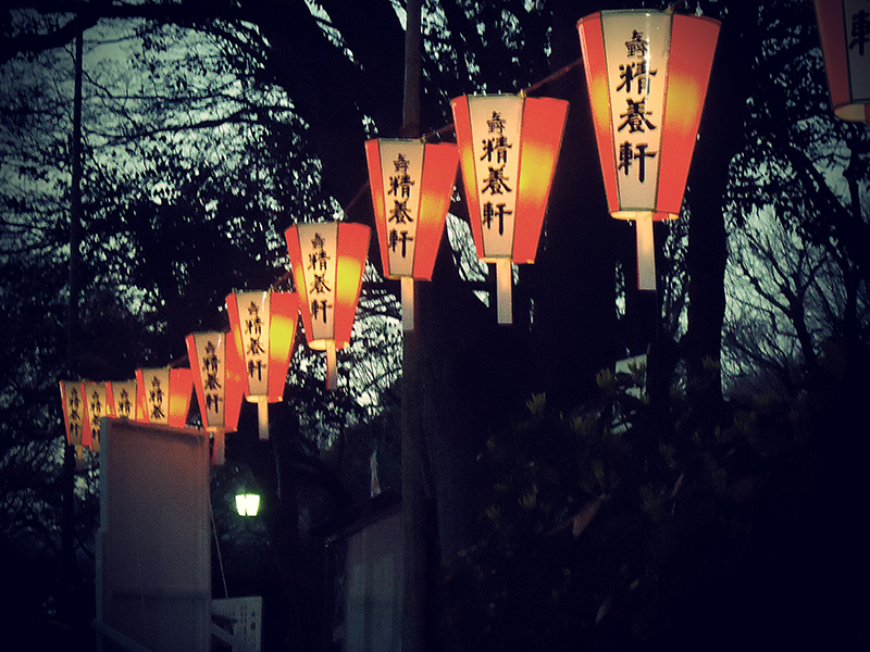 lanternas tipicas japonesas no parque