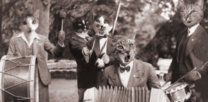 Cats Playing in a Band
