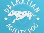 Agility Dalmatian Decals