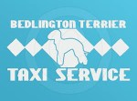 Bedlington Terrier Taxi Decal