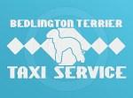 Bedlington Terrier Taxi Decal
