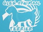 Spiral Glen of Imaal Terrier Decal