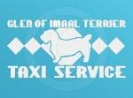 Glen of Imaal Terrier Taxi Decal