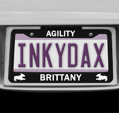 Brittany Agility License Plate Frame
