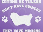 Funny Coton de Tulear Vinyl Stickers