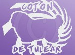 Cool Coton de Tulear Vinyl Stickers