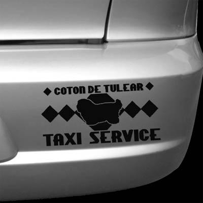 Coton de Tulear Taxi Decal