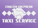 English Shepherd Taxi Sticker