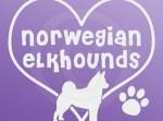 I Love Norwegian Elkhounds Stickers