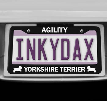 Yorkshire Terrier Agility License Plate Frame