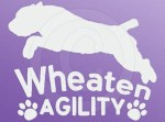 Wheaten Terrier Agility Decals