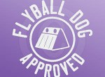 Flyball Approved Decal