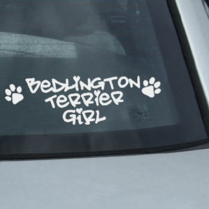 Bedlington Terrier Girl Decal