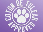 Coton de Tulear Decal