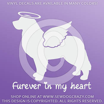 Angel Bernese Mountain Dog Car Decals