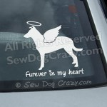 Angel Smooth Collie Car Stickers