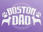 Boston Terrier Dad Decals
