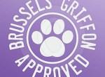 Brussels Griffon Stickers