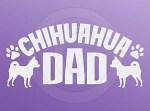 Chihuahua Dad Sticker