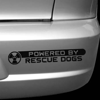 Rescue Dog Car Decals