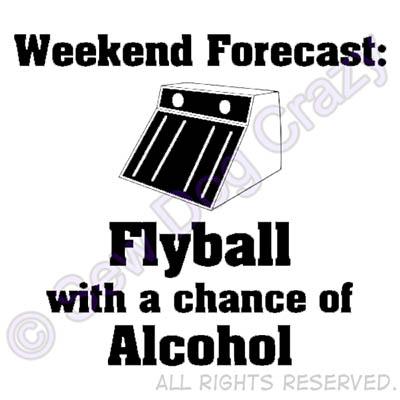 Weekend Forecast Flyball Sweatshirt