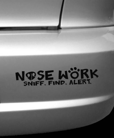 Nose Work Car Sticker