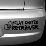 Love My Flat Coated Retriever Car Window Sticker